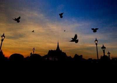 birds fly over the royal palace